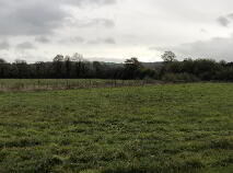 Photo 4 of C. 12 Acre Field, Lanespark, Ballynonty, Thurles, Tipperary