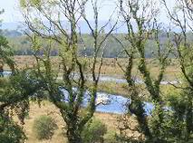 Photo 31 of Caldragh, Carrick-On-Shannon, Leitrim
