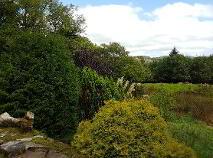 Photo 23 of Mount Taffe, Meenaglogh, Aclare