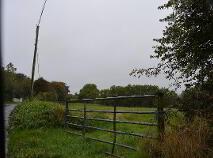 Photo 2 of Ferney Hill, Killinick