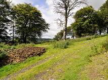 Photo 9 of Kilbride, Kilbride