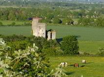 Photo 3 of Castlehill, Ballyadams, Athy