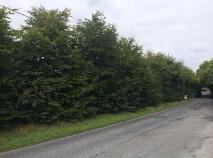 Photo 2 of Osberstown, Naas, Kildare
