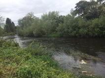 Photo 3 of Osberstown, Naas, Kildare