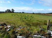 Photo 9 of Evikeens, Boyle, Roscommon