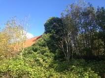 Photo 1 of Bushmount, Firies, Killarney