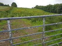 Photo 11 of Logcurragh, Swinford