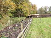 Photo 29 of 1 Corryard Wood, Drumshanbo, Leitrim