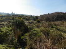 Photo 3 of 19.5 Acres @ Kealkill, Bantry, Cork