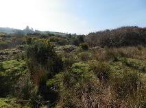 Photo 3 of 19.5 Acres @ Kealkill, Bantry, Cork