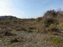 Photo 4 of 19.5 Acres @ Kealkill, Bantry, Cork
