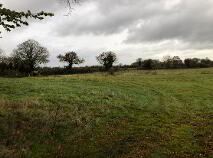 Photo 3 of C. 12 Acre Field, Lanespark, Ballynonty, Thurles