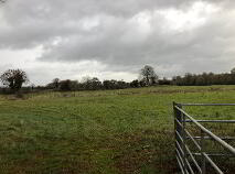 Photo 5 of C. 12 Acre Field, Lanespark, Ballynonty, Thurles