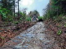 Photo 4 of Ballynakillew Mountain, Laghy