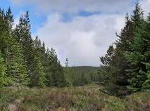 Photo 1 of Altderg, Crossmolina