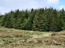 Photo 3 of Altderg, Crossmolina