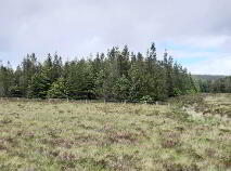 Photo 5 of Altderg, Crossmolina