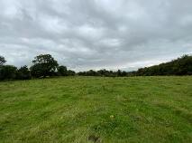 Photo 3 of 30 Acres - Ballinaskea, Enfield Co Meath