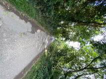 Photo 4 of 28 Acres - Newhaggard Lane, Bellewstown