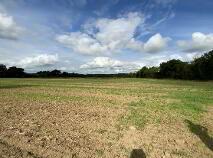 Photo 3 of 28 Acres - Newhaggard Lane, Bellewstown, Bellewstown