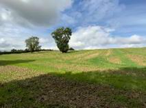 Photo 4 of 28 Acres - Newhaggard Lane, Bellewstown, Bellewstown