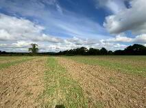 Photo 9 of 28 Acres - Newhaggard Lane, Bellewstown, Bellewstown