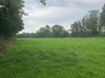 Photo 3 of 9 Acres - Cullentra, Longwood