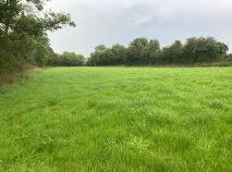 Photo 2 of 9 Acres - Cullentra, Longwood