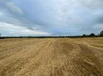 Photo 1 of 44 Acres - Longwood, Ballynabarny, Longwood
