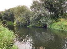 Photo 9 of 44 Acres - Longwood, Ballynabarny, Longwood