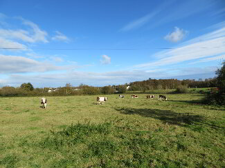 Photo 1 of Development Lands At 20A Clonmakate Road, The Birches, Portadown
