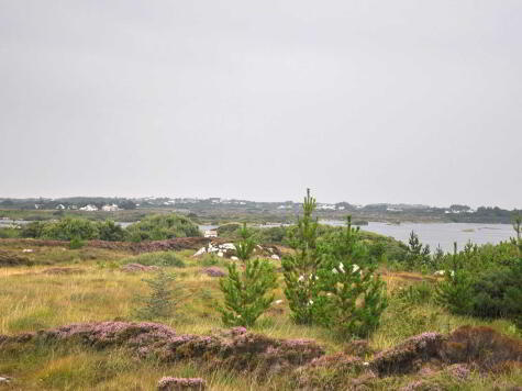 Photo 1 of Meenmore, Dungloe, County Donegal