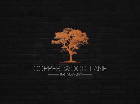 Photo 1 of Copper Wood Lane, Ballymoney