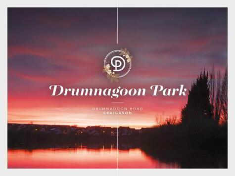 Photo 1 of Drumnagoon Park, Craigavon