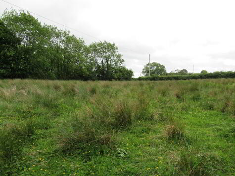 Photo 1 of C.6 Acres At, Woodquarter, Cranford, Milford