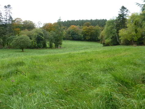 Photo 1 of Lands At Ratona, Derrygonnelly Road, Enniskillen