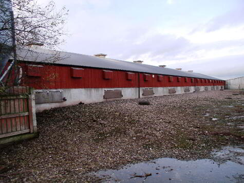 Photo 1 of (Poultry,Land,House), 8 Raveagh Road, Eskra, Omagh