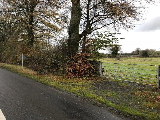 Photo 1 of C. 12 Acre Field, Lanespark, Ballynonty, Thurles