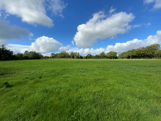 Photo 1 of 9 Acres - Cullentra, Longwood