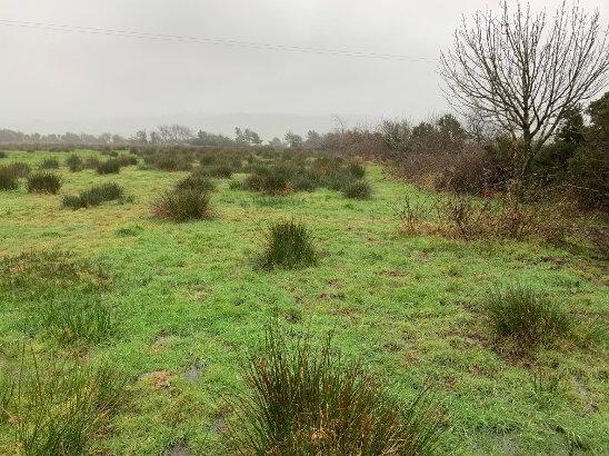 Photo 1 of Driminidy South, Drimoleague, Cork