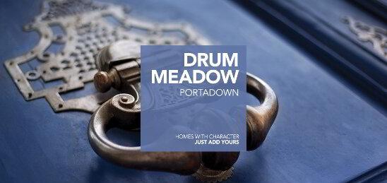 Photo 1 of Drum Meadow, Portadown