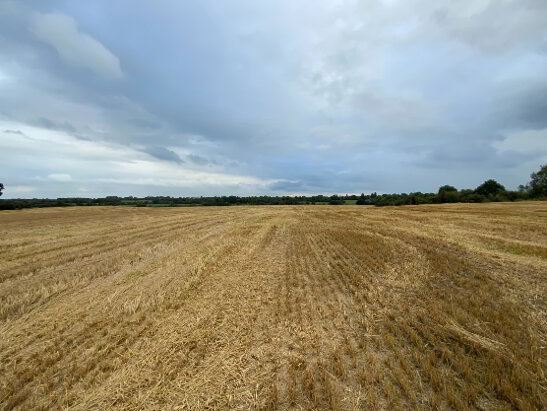 Photo 1 of 44 Acres - Ballynabarney, Longwood