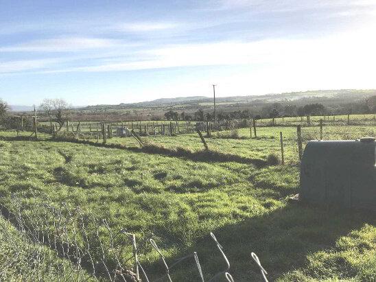 Photo 1 of Newtown, Caherconlish