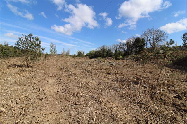 Photo 1 of Site, Old Park Road, Loughinisland, Downpatrick