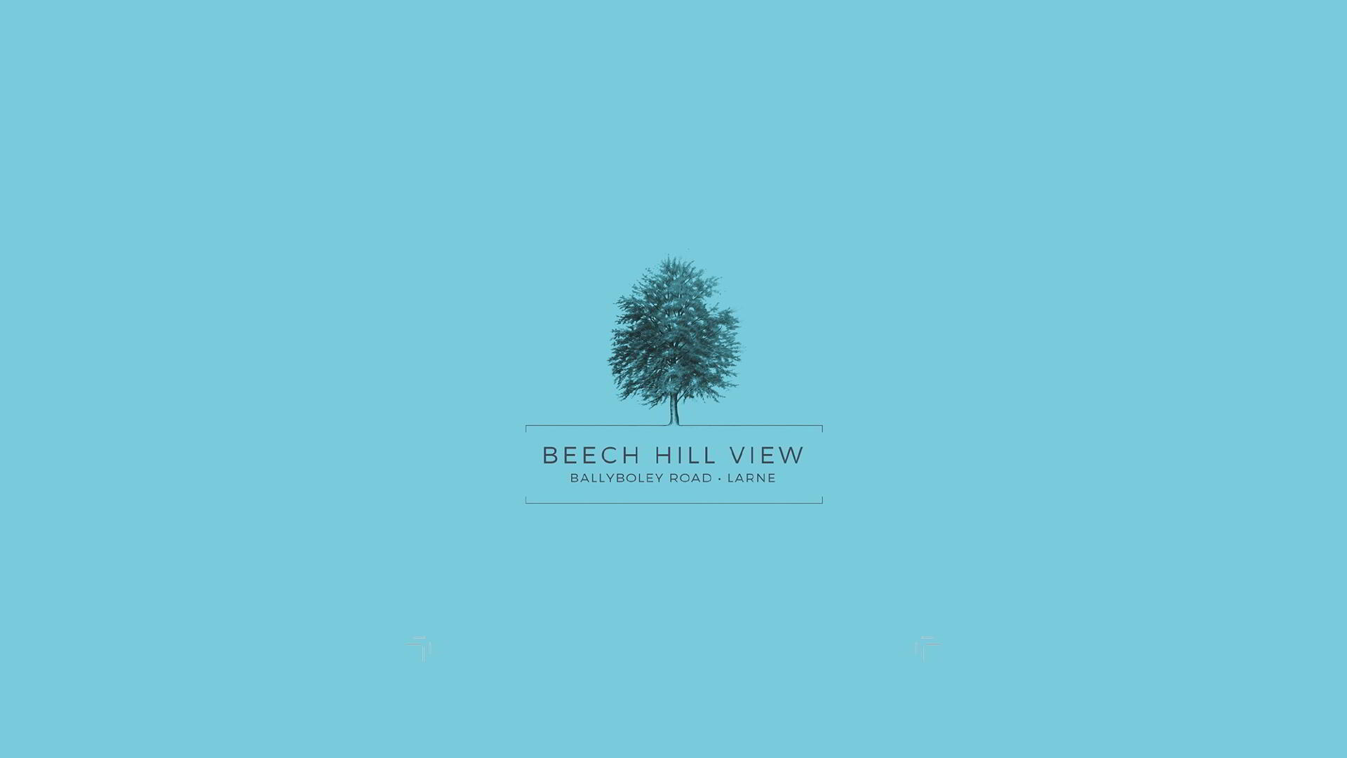 Beech Hill View, Larne