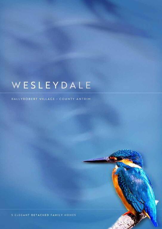 Photo 1 of The Kingfisher, Wesleydale, Ballyrobert / Newtownabbey