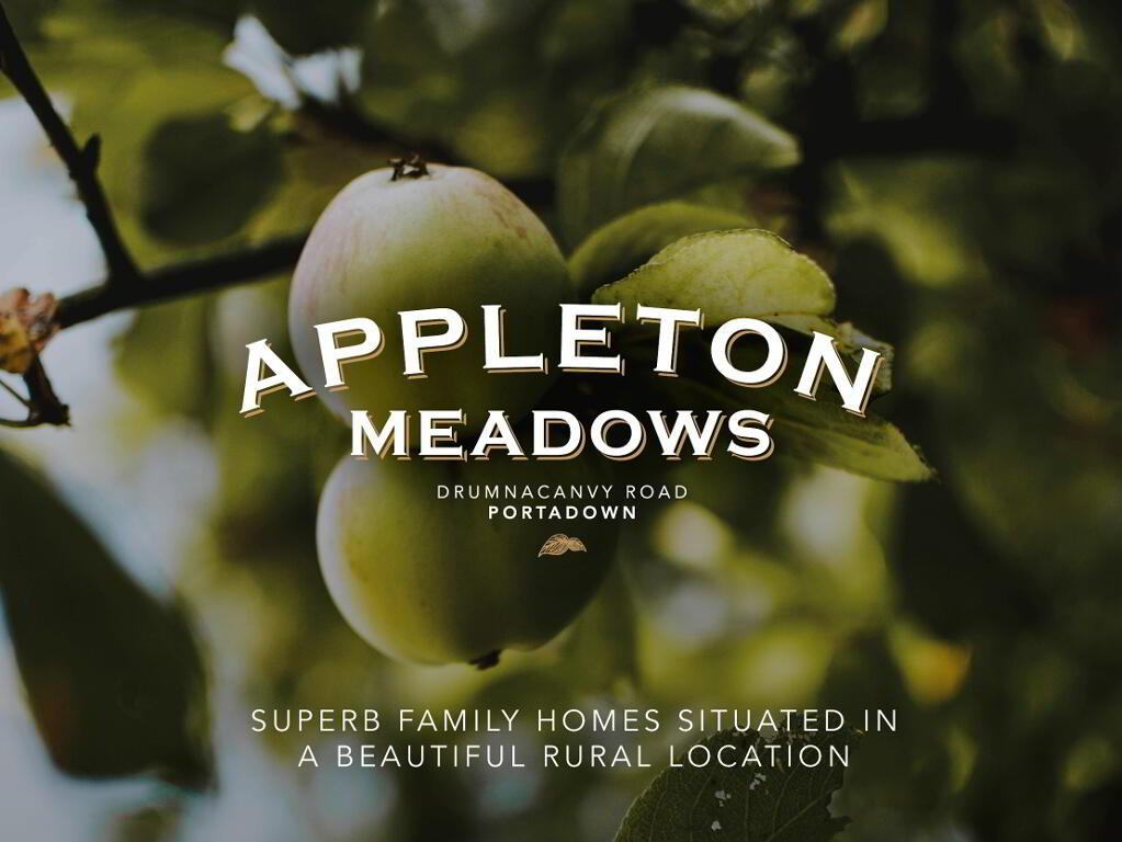 Photo 1 of Appleton Meadows, Portadown